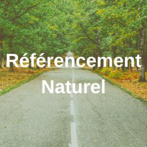 Référencement Naturel - Nomad'Ly