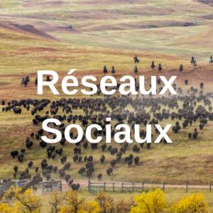 Réseaux Sociaux - Nomad'Ly